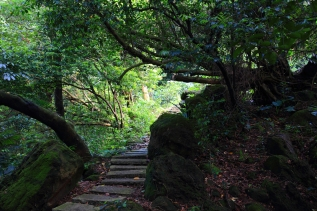 天南寺步道